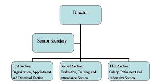 Bright Personnel Organization Chart 2019