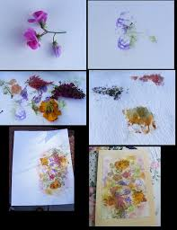 make your own cards from smashing flowers onto watercolor paper gently with a hammer