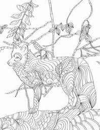 Download This Free Fox Adult Coloring Page From The Nature Patterns