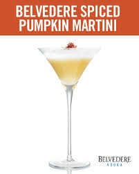 262 Best Want A Drink Images On Pinterest  Recipes Party Drinks Party Cocktails Vodka