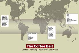 Once the beans are done steeping, add cold milk or cream. Where Does Coffee Come From Bean Poet