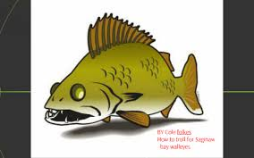 Crawler Harness Depth Chart How To Troll For Walleye In The Saginaw Bay By Cole Folkes
