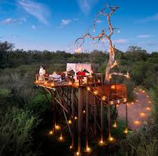 luxurious tree house. This Luxurious Treehouse, Originally Built As An Escape From Predators Roaming The Below Plains, Is Completely Secluded, Offering Guests A Uniquely Private Tree House