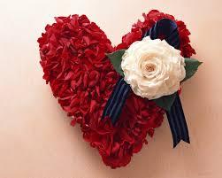 rose love heart