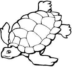 Animals Coloring Pages For Kindergarten Coloring Pages Kindergarten