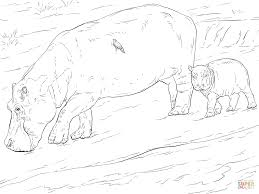 Small Picture Mother And Young Hippo coloring page Free Printable Coloring Pages
