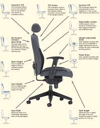 office chair guide. Back Support For Office Chair New Fice Guide Seating Ergonomic U