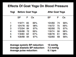 Goatyogaresults Pamela Wible Md