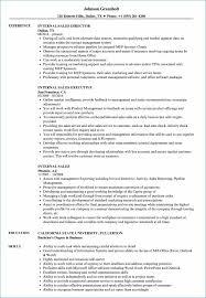 Internal Audit Resume Igniteresumes Com