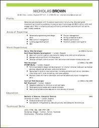 Download Resume Template Word Luxury Resume Templates Resume