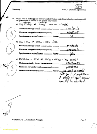 Chapter 18 Viruses And Bacteria Worksheet Answers