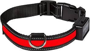Eyenimal NGCOLLUM018 USB Light Pet Collar ... - Amazon.com