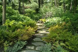 Small Picture Woodland Gardening Ideas Woodland landscaping ideas pictures to