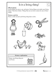 living and nonliving printables for kinder1:posterior compartment 2:ora serrata 3:ciliary muscle 4:ciliary zonules