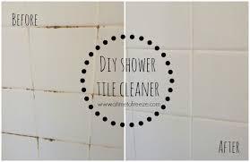 Long Handle Bath Room Tub & Shower Tile Scrubber with Heavy Duty Cleaner  Sponge