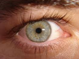 Image result for blurry vision