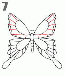 step 7 draw in more details to the upper wings step 8