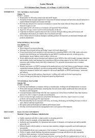 Sample General Manager Resume Vp General Manager Resume Samples Velvet Jobs