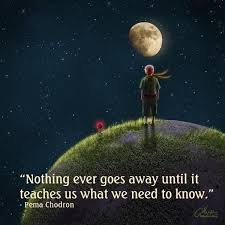 the best little prince quotes the little prince the 25 best little prince quotes the little prince 43591