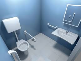 bathroom diity aids home design marvelous for the elderly image