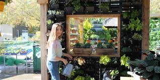 Small Picture Your Guide to Creating a Vertical Garden Lifestyle HOME