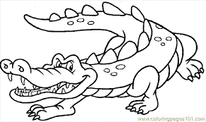 Small Picture Awesome Crocodile Coloring Pages Print Ideas Coloring Page