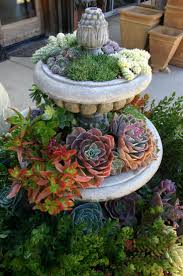Succulent container gardens can transform bland outdoor spaces into  inviting living areas. In turn, the plants benefit from warmth radiated by  your ...