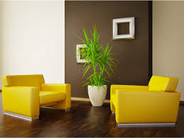 Surround A Dark Accent Wall Such As French Roast SW 40 With Inspiration Bright Colors For Living Room Exterior