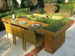 planter table with herbs and fruits