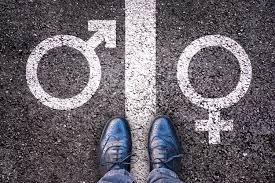 """Résultat de recherche d'images pour """"masculin feminin langue française"""""""