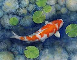 koi pond by hailey e herrera art journey