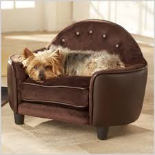 fancy pet furniture. Stylish Pet Furniture You\u0027re Sure To Love Fancy I