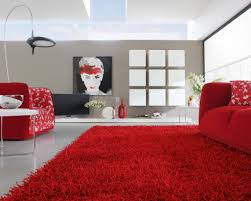 fluffy contemporary red rugs