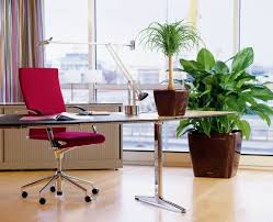 modern office plants. Modern Office With Houseplants In Brown Ceramic Pots Modern Office Plants