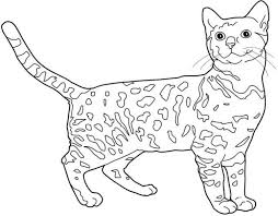Search for kids coloring pages in these categories. Free Coloring Pages For Big Kids According To Stella