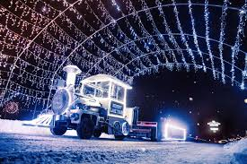 The Christmas Lite Show Michigans Largest Drive Thru