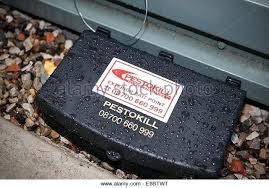 rat poison pellets home depot. Home Depot Mouse Poison Rat Trap One Bite Pellets