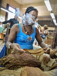 Image result for images cigar factories