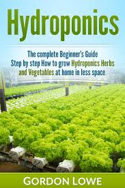 indoor hydroponic vegetable garden. Hydroponics : For Beginners: The Complete Guide How To Grow Herbs And Vegetables Indoor Hydroponic Vegetable Garden
