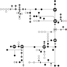 Pike Chart Graphic Chart Of Connectivity Among The Network Of Salmonid