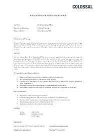Resume Ceo Template