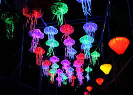Lantern Light Festival Coupon Code Miami Save On Luminosa At Jungle Island Featuring A Million Tiny