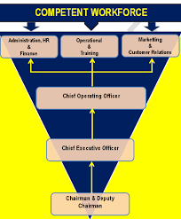 Bottom Up Org Chart Organization Structure Vescape Security Sdn Bhd