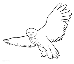 Small Picture Free Printable Owl Coloring Pages For Kids Cool2bKids
