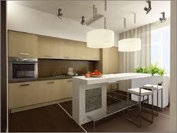 Modern Asian Kitchen Astounding Asian Inspired Kitchen Design 16 In Kitchen Design