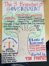 State Government Chart 2nd Grade Social Studies Anchor Chart 3 Branches Of The