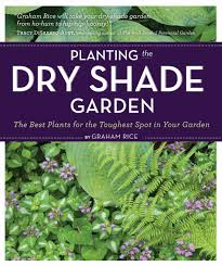 Small Picture Planting the Dry Shade Garden The Best Plants for the Toughest