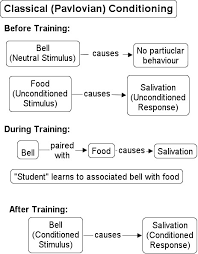 Classical Conditioning In The Classroom Behavioral Views Of Learning
