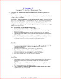 30 60 90 Business Plan 4 Cleaver 30 60 90 Business Plan Outline Photos Usa Headlines