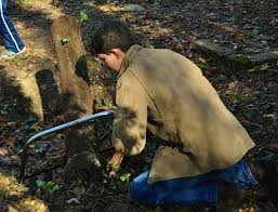 evergreen cemetery restoration project a student photo essay decades of english ivy cover grave markers making it very difficult to locate the final resting place of many of our city s african american veterans